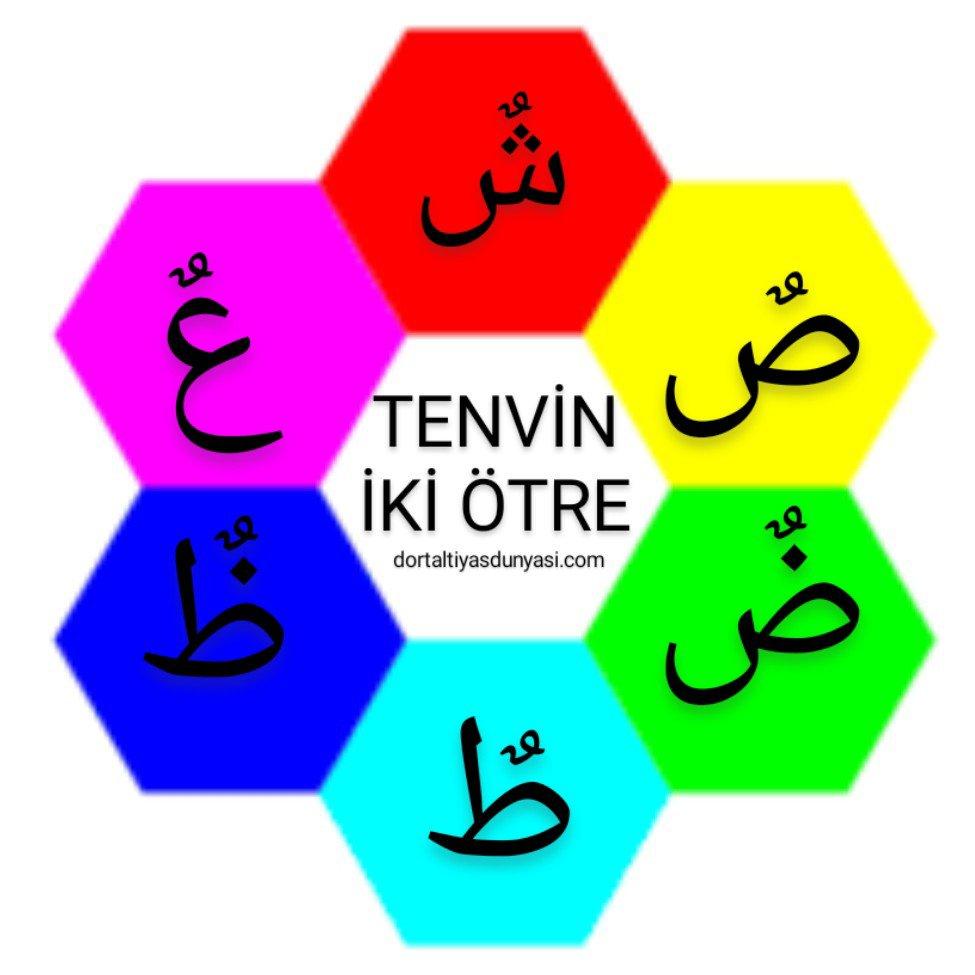 tenvin çalışma sayfası