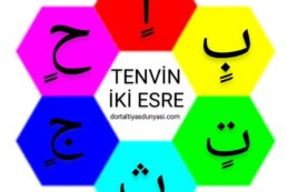 TENVİN İLE İLGİLİ ÇALIŞMA SAYFASI -İKİ ESRE